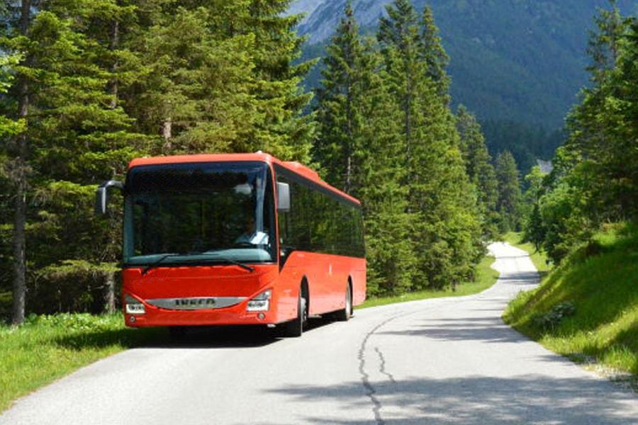 roter Bus fährt auf Straße an der viele Bäume stehen